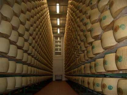 Parmigiano reggiano cheese factory