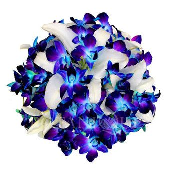 Blue Orchid Posy