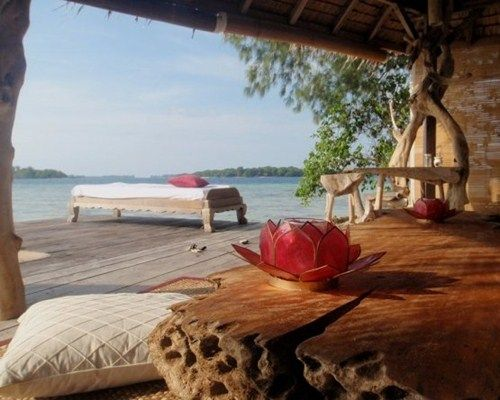 Endangered Indonesia   Pulau Macan
