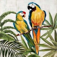 Two Parrots Oil Painting Canvas Wall Art $229.95