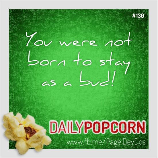 """MAY10: """"You were not born to stay as a bud!"""" #DailyPopcorn #DeyDos  Your inbox wants Daily Popcorn.  Get them here: http://eepurl.com/KrXdj"""