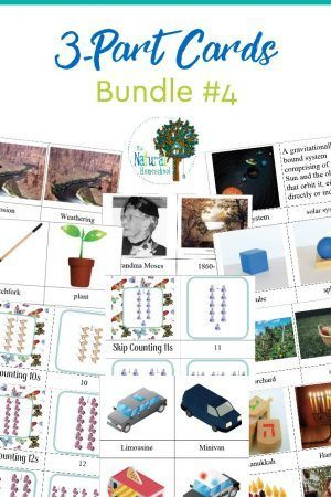 2022 best diy montessori activities images on pinterest 3 part cards bundle 4 fandeluxe Images