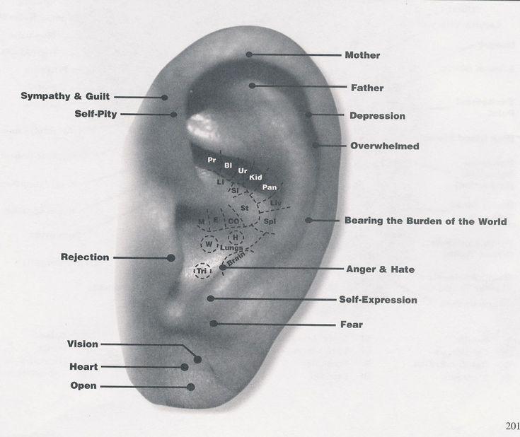 Human anatomy pressure points