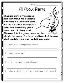 Reading Comprehension Worksheet (science, English, LAL)