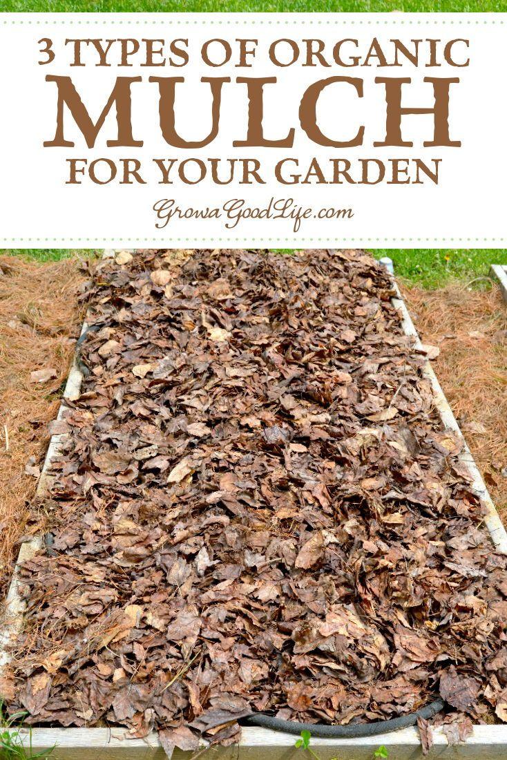 5 Ways Organic Mulch Helps Your Vegetable Garden Organic Mulch Garden Mulch Organic Vegetable Garden