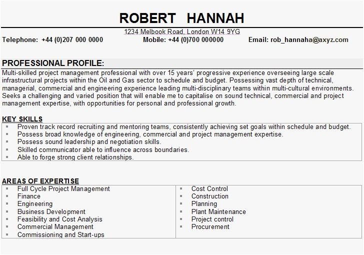 Cv Template Key Skills Resume Skills Sample Resume Resume Examples