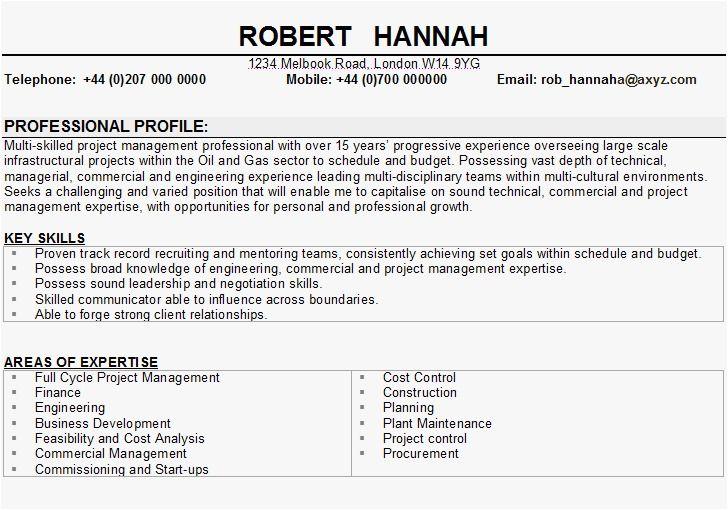 Cv Template Key Skills Resume Format Resume Skills Business Analyst Resume Resume Examples