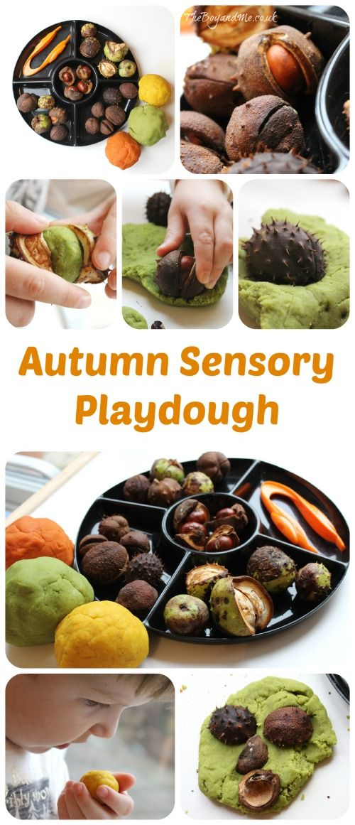 Autumn Sensory Playdough: naturally-scented and coloured playdough combined with Autumn treasures.