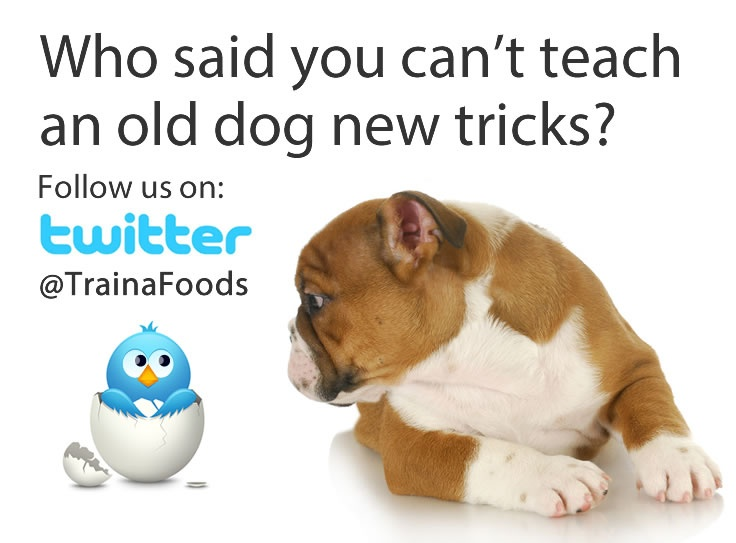 Find us on twitter: @TrainaFoods