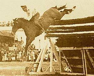 Huaso (1933 - August 24, 1961) was the horse that, ridden by Chilean Captain Alberto Larraguibel, set the high-jump world record on February 5, 1949, by jumping 2.47 m (8 ft 1 in) in Viña del Mar, Chile, one of the longest-running unbroken sport records in history (62 years as of 2011.)