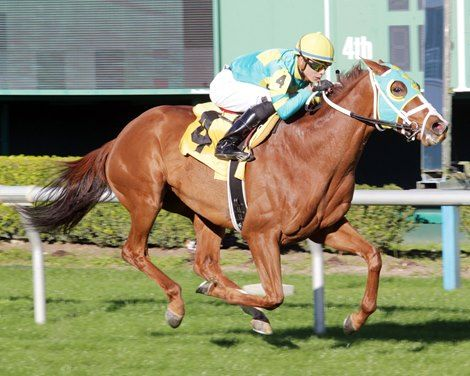 For the fourth year in a row, trainer Mike Maker saddled the winner of the  John B. Connally Turf Cup Stakes (G3T) at Sam Houston Race Park as Bigger Picture crossed the wire 1 1/2 lengths in front.