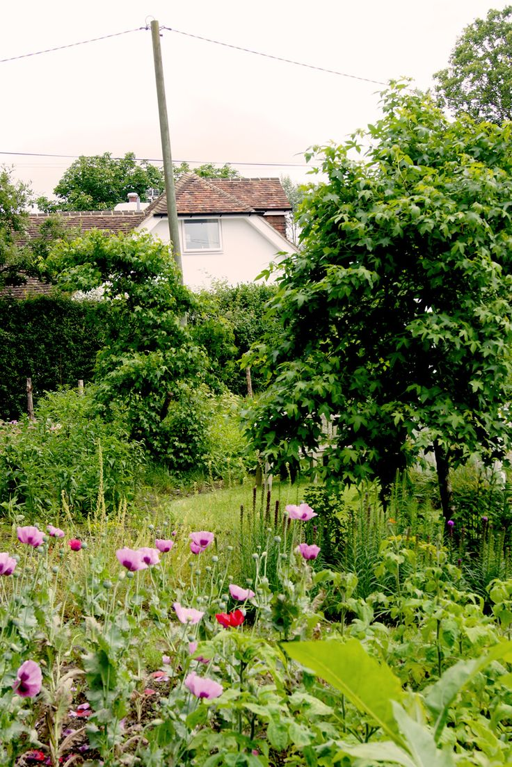 Die 7 Schonsten Garten Sudenglands In 2020 Haus Und Garten Englischer Garten Garten