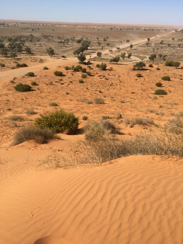 View from the Little Red Sand Dune