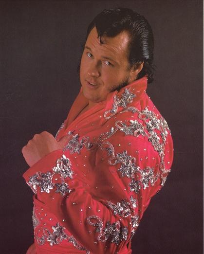 97 best images about wrestling attire on pinterest nikki bella total divas and wwe divas - Star porno diva ...