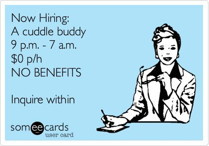 Now Hiring: A cuddle buddy 9 p.m. - 7 a.m. $0 p/h NO BENEFITS Inquire within.
