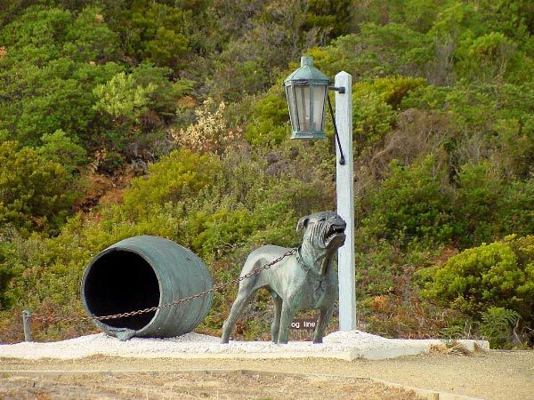 The Dog Line, Eaglehawk Neck.  Photo by Dan Fellow, article for Think #Tasmania