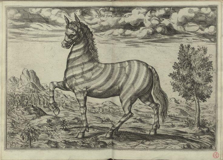 """Res. 3998 P. - 0003_new -  Filippo Pigafetta (1533-1604) – """"Relatione del Reame di Congo et delle circonuicine contrade"""". In Roma : appresso Bartolomeo Grassi, 1591. BNP RES. 3998 P."""