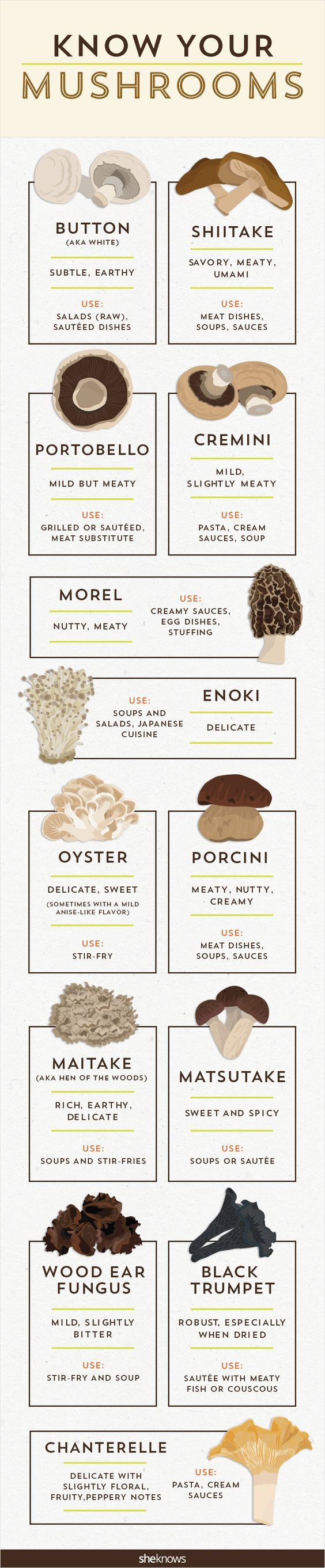 Know Your Mushroom - http://explo.in/28SAU09 #Bangalore #Restaurants