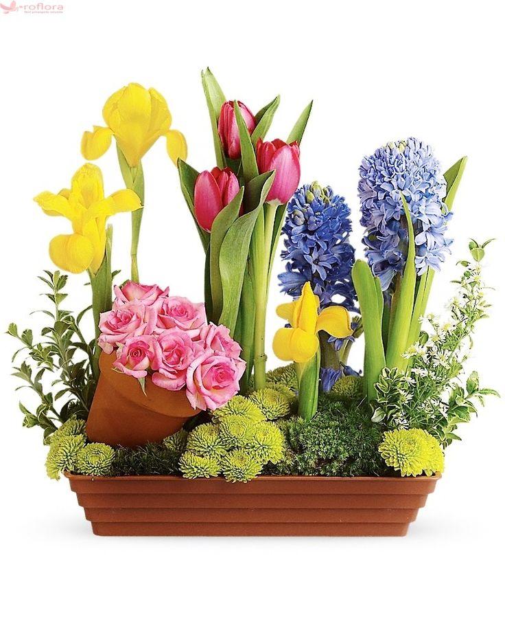 Dor de Duca – Aranjament cu lalele, zambile, irisi, crizanteme si trandafiri