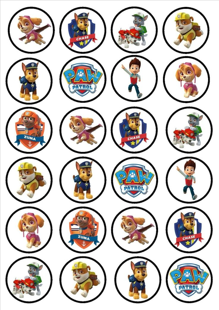 Paw Patrol Edible PREMIUM THICKNESS SWEETENED VANILLA,Wafer Rice Paper Cupcake Toppers/Decorations: Amazon.co.uk: Grocery