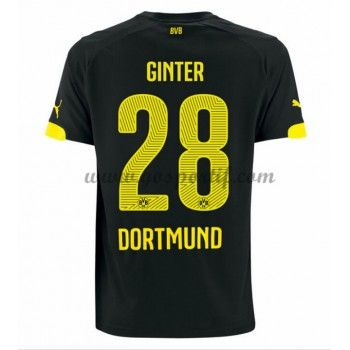 best 25 bundesliga bvb ideas on pinterest bundesliga