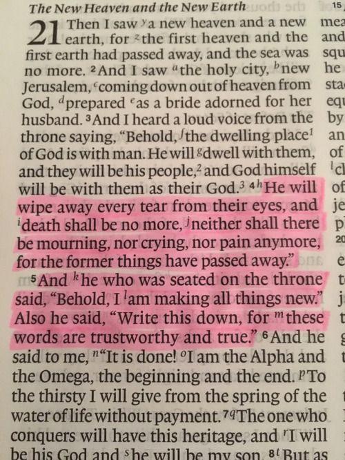 Seek First • foreverhelives: Revelation 21:4-5 Hallelujah