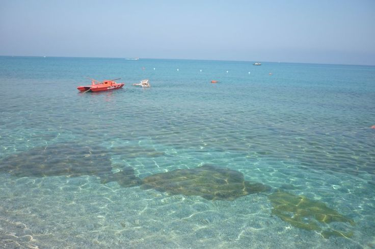 Live from TROPEA, in Calabria's region. How can you resist? It's bath time in this crystal clear sea!