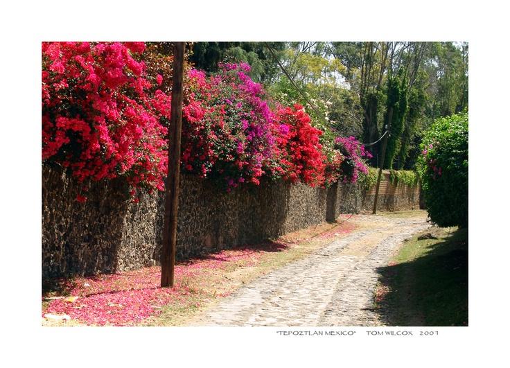 Tepoztlan Mexico by `TomWilcox on deviantART