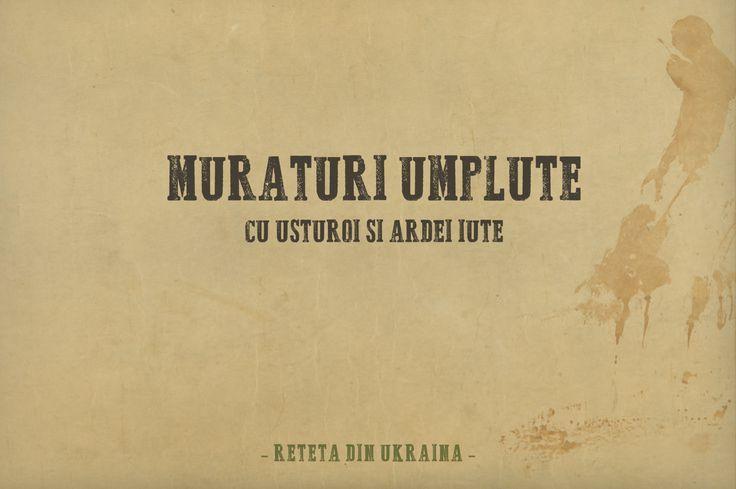 Muraturi umplute 01