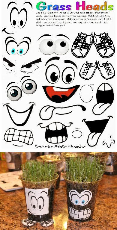 Grass Heads * are like Chia Pets and a fun way to teach Cubs about growing seeds.  This site has a lot of Blue & Gold Ideas, Tracking Sheets & lots of other great Cub Scout Ideas compliments of Akelas Council Cub Scout Leader Training. Utah National Parks Council has planned this exciting 4 1/2 day Cub Scout Leader Training like Woodbadge that covers Cub Scout Info, den doodles, yells, skits, Outdoor Webelos Experience & much more. AkelasCouncil.com