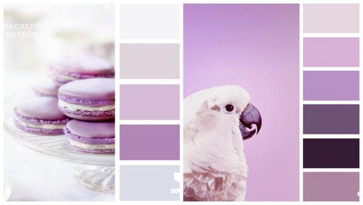 Welche Farben passen zu Flieder und Lila