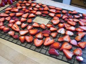 Dehydrating Fruit, How to dry apples, peaches, pears, apricots, strawberries, cherries