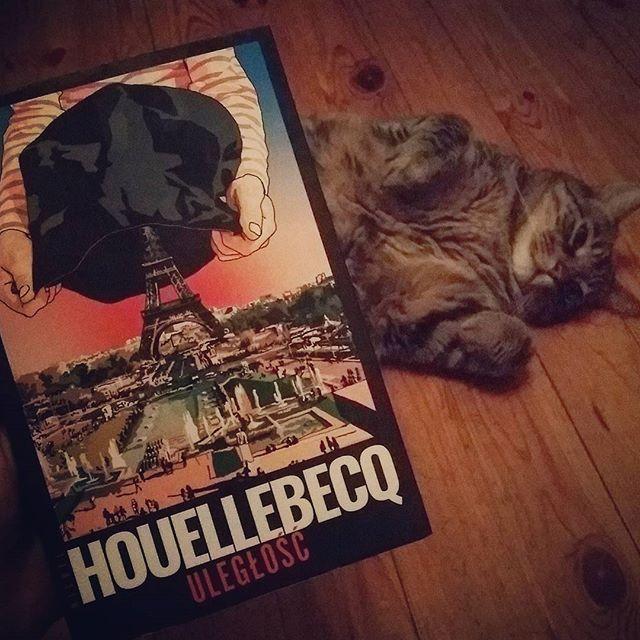 Jakoś w weekend skończyłam czytać. Pewnie będzie parę słów na blogu, ale dopiero w przyszłym tygodniu, bo już wiszą zaplanowane dwie inne recenzje. W tle gościnnie wystąpił uległy Judasz. Chciał Wam zobrazować, na czym to polega. #książka #Houellebecq #uległość #kot #neiraczyta