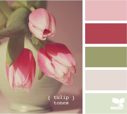 tulip tones - pink and green :)Good Ideas, Painting Colors Combinations, Pantone Chips, Design Seeds, Palettes Guide, Colors Palettes, Color Combinations, Painting Colors Schemes, Tulip Tone