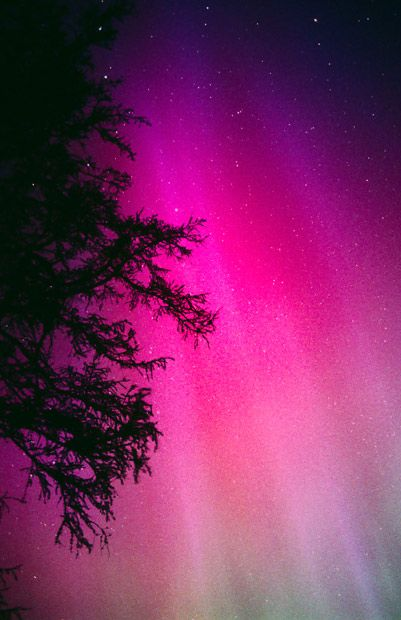 When Jim first became obsessed with auroras in the early 1990s he would spend up to 40 hours a week of his spare time patiently waiting for the displays - which usually never came. But when they did the rewards for Jim far outweighed the time he spent watching. Northern lights on May 1, 1990, captured over Aberdeen. Picture: Jim  Henderson / Barcroft