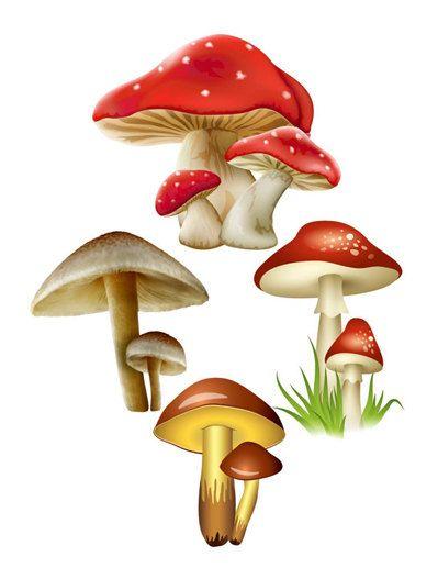 Mushroom Image Mushroom Cutout Fall Fairy by DigitalArtMovement