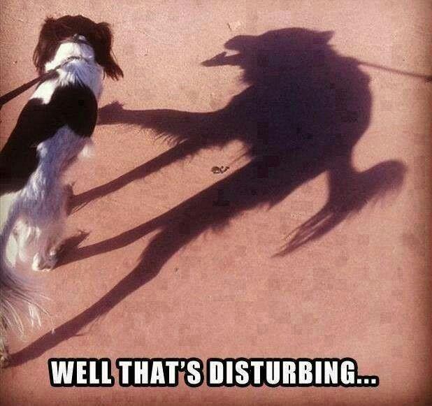 Thats creepy. Lol