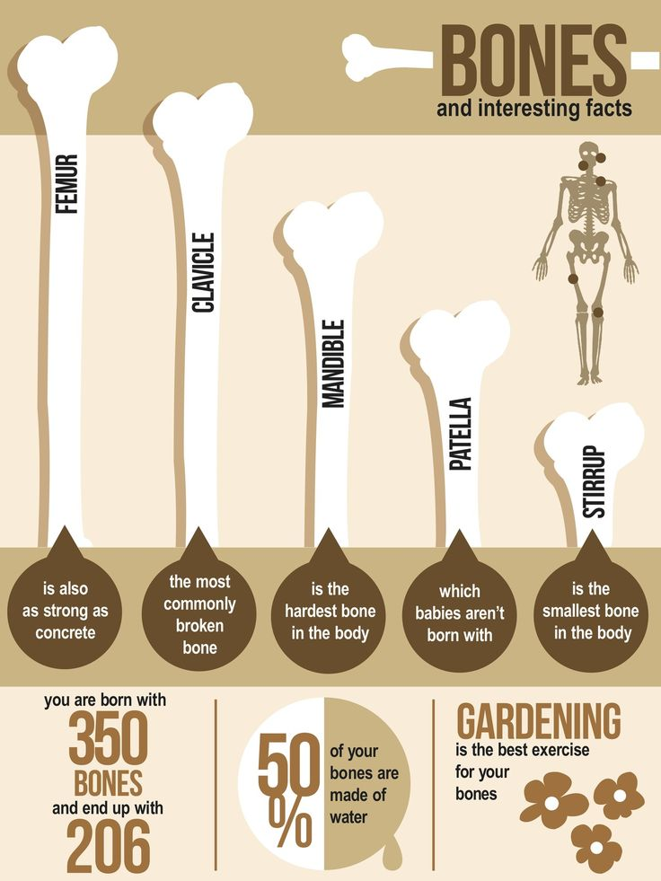 Bones: Interesting Facts Gardening is the best activity for your bones!!