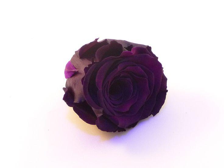 rose éternelle de couleur Pourpre, parfait pour une décoration florale de longue durée.