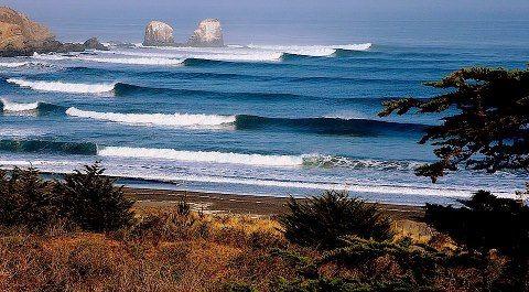 Punta de Lobos- Chile