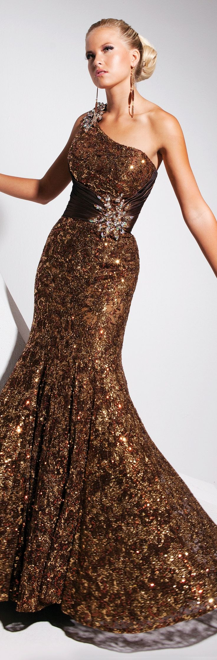 beautiful brown evening gown