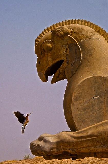 Ancient griffon in Persepolis, Iran
