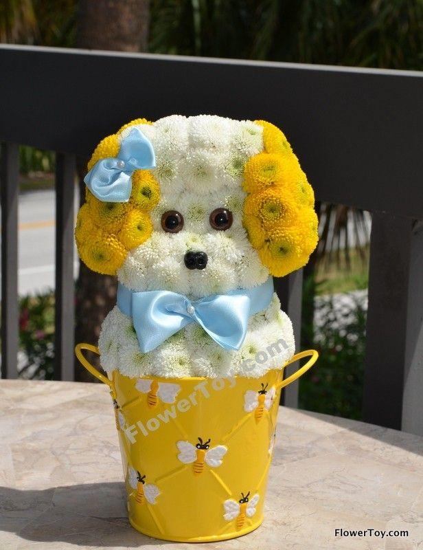 FlowerToy Mini Boy Puppy