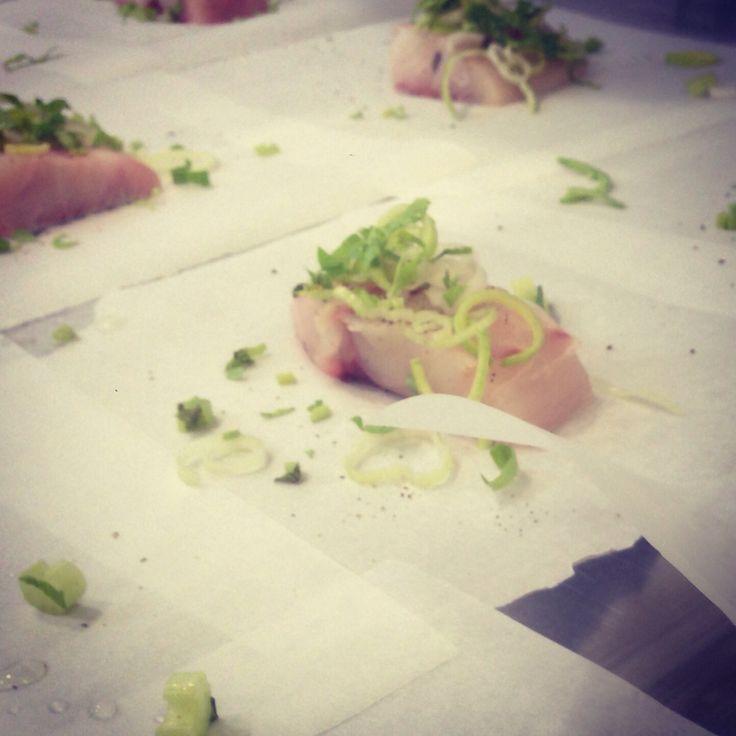 Preparing Gelan Fish. An ancient recipe taken from Archestratus's Life of Luxury.