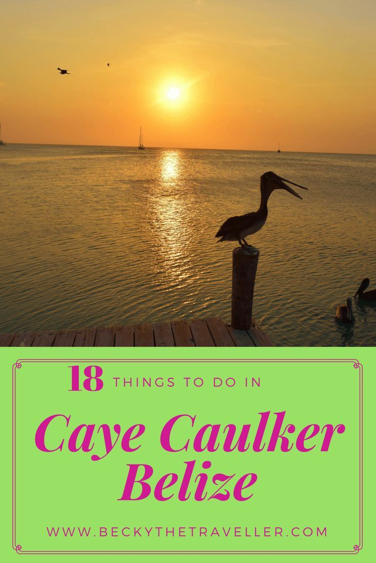 Caye Caulker is a beautiful mangrove island a water taxi away from Belize City. Read this for things to do in Caye Caulker whilst you are on this island. Belize | Snorkelling | Diving | Island | Paradise | Wildlife