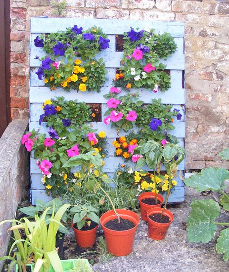 Learn how to make a vertical pallet garden!