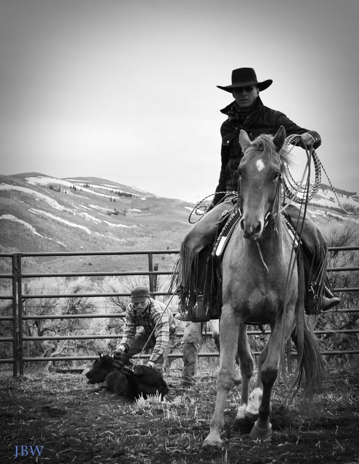 Ramblings from a Ranch Wife. This is a great photo! #lifeoutwest