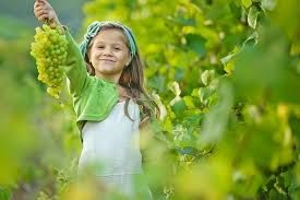 Afbeeldingsresultaat voor дети с виноградом