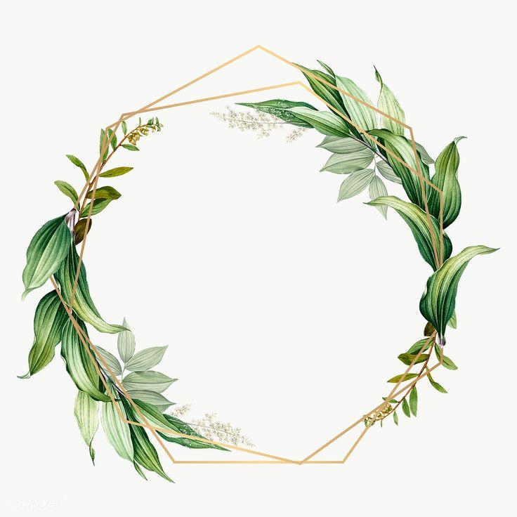 Download premium illustration of Tropical botanical frame transparent png
