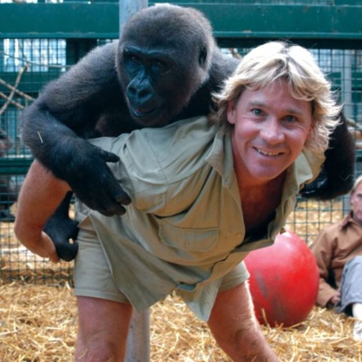 On Biography.com, learn more about Steve Irwin, a wildlife enthusiast who parlayed his exuberance into worldwide fame.